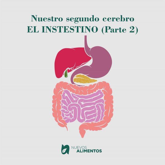 """Texto de @dramonicacossio Nuestro 2 🧠 """"el intestino"""" NO SOMOS LO QUE COMEMOS, SINO LO QUE ABSORBEMOS.  La comida es la información que le damos al cuerpo. Cada bocado y cada sorbo son """"datos"""" para nuestro organismo. Desde que decidimos el/los alimentos a colocar en nuestro plato, y llevarlo a nuestra boca para que comience el proceso de masticación, la saliva empieza a fluir por la boca (a veces antes por el aroma y la vista). Esa saliva contiene la primera enzima digestiva con la que vamos a empezar el proceso. Pero esto es muy importante, ya que muchas veces la masticación no se da en óptimas condiciones, por que no le dedicamos el tiempo a masticar y TRAGAMOS, pero aquí va un mensaje MUY importante para ustedes: MASTICAR BIEN ES UNA MANERA DE AYUDAR A EVITAR EL INTESTINO PERMEABLE. Durante la masticación se envía un mensaje al estómago para que vaya preparando los ácidos y al páncreas para que envié otras enzimas al intestino delgado.  Sino masticamos bien no sólo perdemos nutrientes, sino que lo más probable es que lleguen partículas al colon sin digerir, provocando indigestión, gases, un festín para las cepas de bacterias perjudiciales que viven allí.  No olviden el trabajo que tiene el estómago con el ácido clorhídrico, destruír si hay bacterias perjudiciales y ayuda a las enzimas del estómago a descomponer las proteínas. Si el estómago no produce suficiente ácido corremos riesgo de desarrollar SIBO (sobrecrecimiento bacteriano intestinal) otra causa de Intestino permeable.  Continuamos el trayecto por el intestino delgado y con la ayuda del páncreas, hígado y vesícula por los jugos digestivos, se logra descomponer el alimento en vitaminas, minerales, grasas, proteínas y carbohidratos. Si este proceso viene bien cuando el quimo sale del intestino delgado e ingresa al intestino grueso, el organismo ya habrá extraído y absorbido el 90% de los nutrientes. Lo que queda en el colon (principalmente fibra) es lo que alimentará a nuestra gran familia de bacterias inte"""